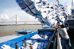 Xuất khẩu gạo: Cạnh tranh để phát triển