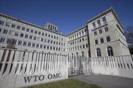 Mỹ hối thúc WTO điều tra biện pháp áp thuế trả đũa của nhiều quốc gia