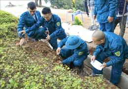 Phát hiện hài cốt, vật liệu nổ tại Di tích Đồi A1, Điện Biên
