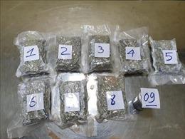 Giấu 2,3kg ma túy trong hàng hóa gửi hàng không từ California về Việt Nam