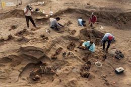 Phát hiện mộ cổ chôn tập thể 140 trẻ em ở một khu tế lễ