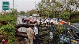 Bão lớn càn quét làm ít nhất 35 người bị thiệt mạng tại Ấn Độ
