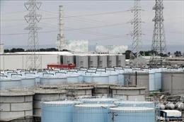 Bắt đầu dọn nhiên liệu tại nhà máy điện hạt nhân Fukushima