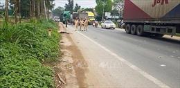 Xe đầu kéo tông ô tô khách, 5 người thương vong