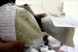 Thu giữ hơn 5 tấn thuốc hướng thần có giá trị 660 triệu USD