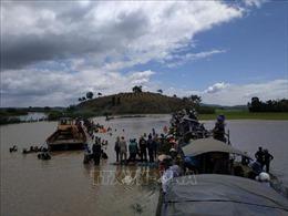 Đắk Lắk: Vỡ đê bao Quảng Điền, hơn 1.000 ha lúa ngập trong nước