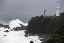 Vụ chìm tàu Panama: Nhật Bản xác nhận 5 thủy thủ thiệt mạng, 3 người mất tích