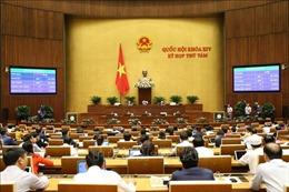 Sáng 14/11, Quốc hội biểu quyết Nghị quyết về phân bổ ngân sách Trung ương năm 2020