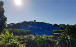 Lào Cai từ chối dự án đầu tư gây ô nhiễm môi trường