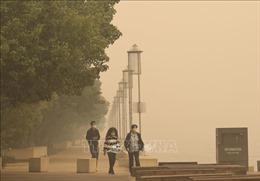 Khói do cháy rừng ở Australia phát tán khắp nơi trên thế giới