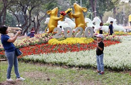 Khai mạc Hội hoa Xuân Thành phố Hồ Chí Minh Canh Tý 2020