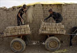 ILO cảnh báo gia tăng lao động trẻ em trên thế giới do dịch COVID-19