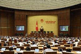 Kỳ họp thứ 9, Quốc hội khóa XIV: Biểu quyết Nghị quyết về Chương trình giám sát của Quốc hội năm 2021