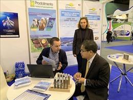 Tiềm năng hợp tác thương mại Việt Nam- châu Phi