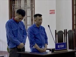 Hòa Bình: Hai đối tượng mua bán trái phép chất ma túy lĩnh án tù chung thân