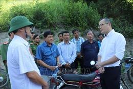 Chủ tịch tỉnh Phú Yên chỉ đạo xử lý nghiêm vụ phá rừng lấn chiếm đất tại xã Phú Mỡ