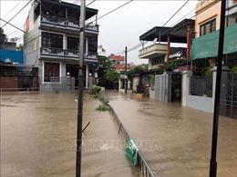 Các tỉnh, thành phố từ Quảng Ninh đến Cà Mau chủ động ứng phó với vùng áp thấp