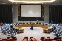 Hội đồng Bảo ản thông qua nghị quyết về Haiti