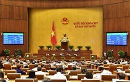 Quốc hội: Tiến hành công tác nhân sự và thông qua nhiều nghị quyết quan trọng