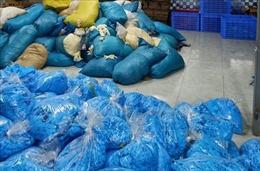 Thu giữ 9,5 tấn găng tay cao su không đảm bảo chất lượng