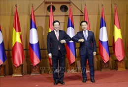 Tham vấn Chính trị cấp Bộ trưởng Ngoại giao Việt Nam - Lào lần thứ 7 tại Lào