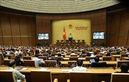 Sáng 13/11, Quốc hội thảo luận về dự án Luật Phòng, chống ma túy (sửa đổi)