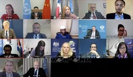 Việt Nam và HĐBA: HĐBA LHQ thúc đẩy điều tra truy cứu tội ác của IS
