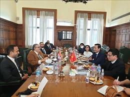 Khơi dậy tiềm năng, thúc đẩy hợp tác kinh tế Việt Nam - Ai Cập
