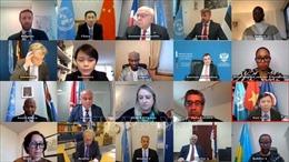 Việt Nam và HĐBA: Thảo luận về xét xử tội phạm tại các tòa án