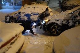 Tây Ban Nha nỗ lực giải quyết hậu quả của bão tuyết kỷ lục