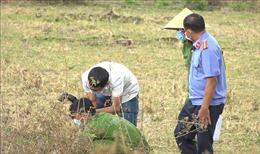 Điều tra vụ người đàn ông bán vé số tử vong dưới ruộng vắng