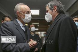 Iran: Chuyến thăm của Giám đốc IAEA đạt 'thành quả đáng kể'
