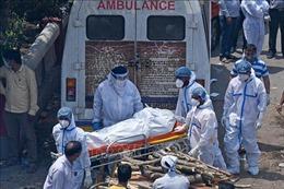 Lãnh đạo Nhà nước, Chính phủ thăm hỏi tình hình đại dịch COVID-19 tại Ấn Độ