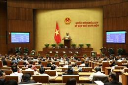 446 đại biểu tán thành thông qua Nghị quyết về việc miễn nhiệm Thủ tướng Chính phủ