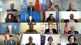 Việt Nam kêu gọi các bên xung đột ở Tây Sahara kiềm chế, sớm quay lại đàm phán