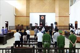 Xét xử vụ Công ty Nhật Cường: Phó Tổng Giám đốc Trần Ngọc Ánh lĩnh án 13 năm tù