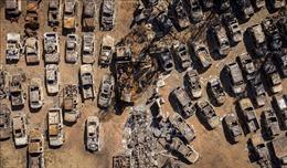 Lại bùng phát đám cháy rừng mới tại bang California của Mỹ