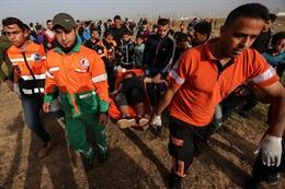 Việt Nam kêu gọi khôi phục vai trò của chính quyền Palestine tại Dải Gaza