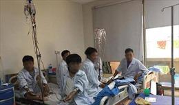 Việt Nam có 12 triệu người mang gen căn bệnh tốn tiền tỉ, điều trị suốt đời Thalassemia