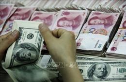 Tỷ giá trung tâm giảm 5 đồng, giá NDT tăng mạnh