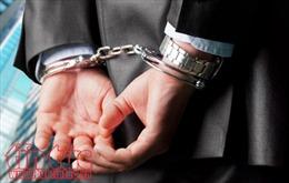 Mexico bắt giữ trùm băng nhóm tội phạm Romania