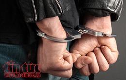 Bắt giữ đối tượng trộm cắp và tàng trữ vũ khí