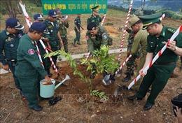 Trồng vườn cây hữu nghị tại cột mốc ngã ba biên giới Việt Nam - Lào - Campuchia