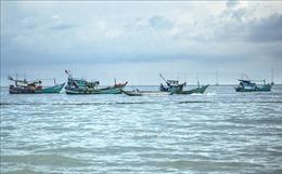 10 năm thực hiện Chiến lược biển Việt Nam - Bài 1: Khai thác thế mạnh từ biển