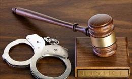 Khởi tố, truy tố, bắt tạm giam các đối tượng vi phạm pháp luật