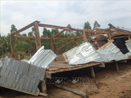 Mưa lớn kèm lốc xoáy làm hư hại hàng chục nhà dân ở Gia Lai