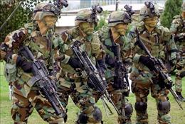 Mỹ tách bạch giữa đàm phán phi hạt nhân với sự hiện diện của quân đội tại Hàn Quốc
