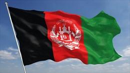 Điện mừng Quốc khánh nước Cộng hòa Hồi giáo Afghanistan