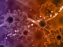 Phát hiện tế bào ung thư 'bất tử' nhờ vitamin C