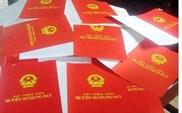 Cử tri Quảng Ngãi lo ngại việc chậm cấp hàng trăm 'sổ đỏ' ở các khu tái định cư